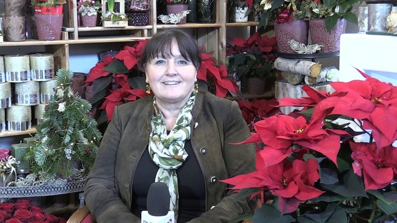 Weihnachts-und Neujahrswünsche aus Murau